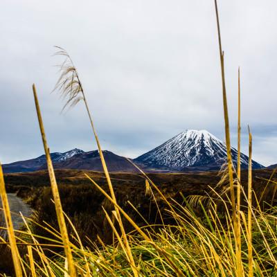 Tongariro National Park, NZ © Stephanie K. Graf