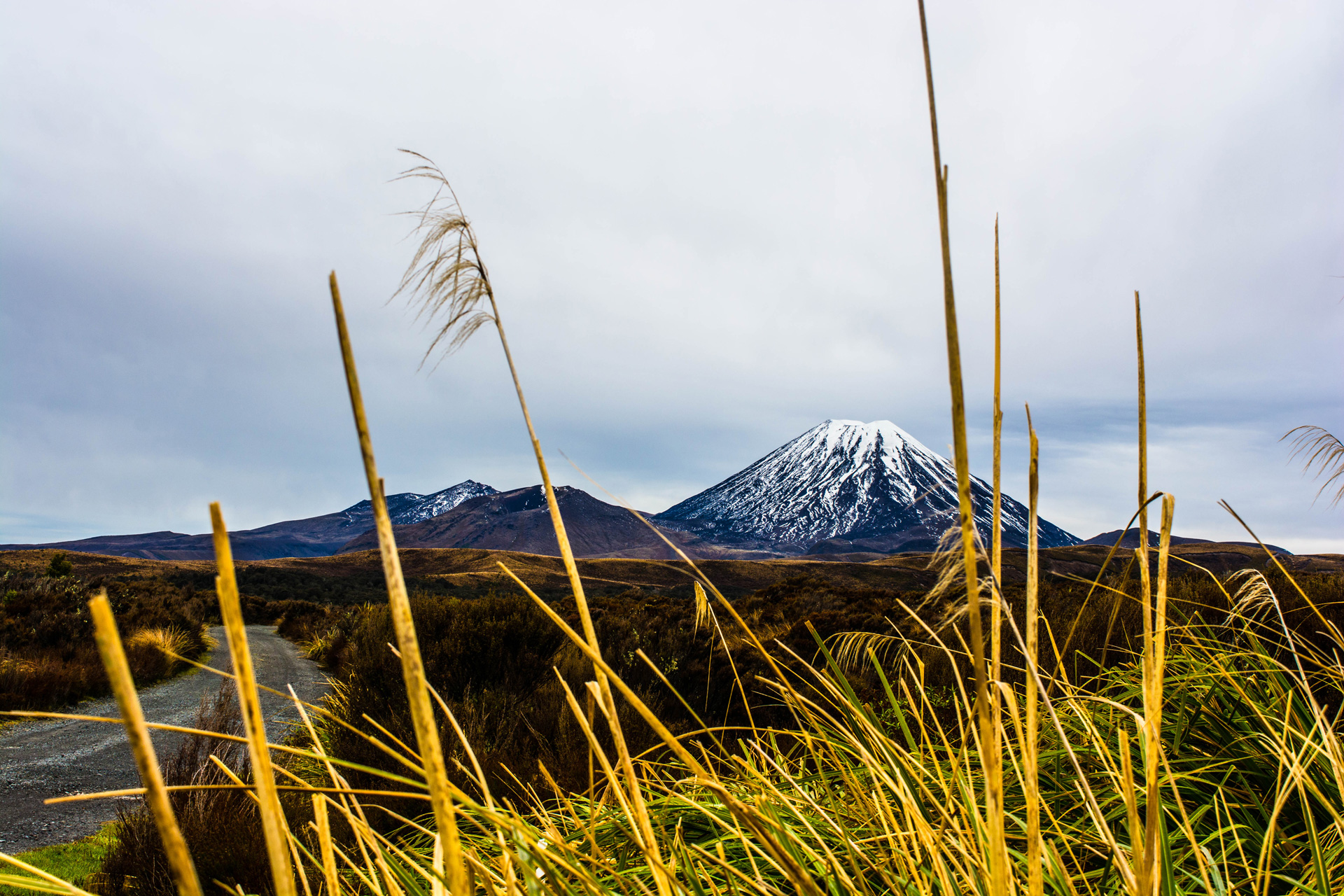 Tongariro National Park, NZ © Stephanie K. Graf