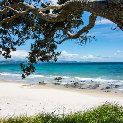 The Coromandel, NZ © Stephanie K. Graf