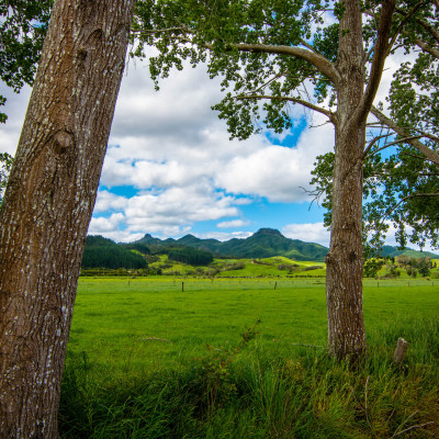 New Zealand, North Island © Stephanie K. Graf