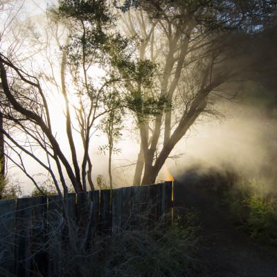 Rotorua, NZ © Stephanie K. Graf