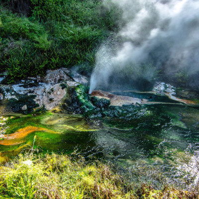Waimangu Volcanic Valley, NZ © Stephanie K. Graf